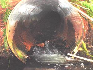 Culvert is rotted & prone to plugging/overflowing--a disaster waiting to happen