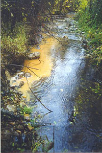 Sediment from road drainage enters Little Brown Creek