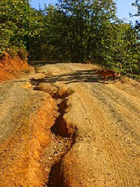 Poor drainage causes road erosion and allows sediment to enter nearby waterways