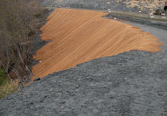 Coco mat, mulch and straw wattles are used to control sediment, slope stability until vegetation is established.